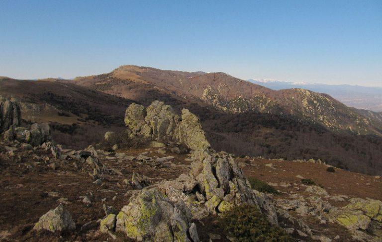 Coll de Banyuls, pic de Sallafort (980 m)