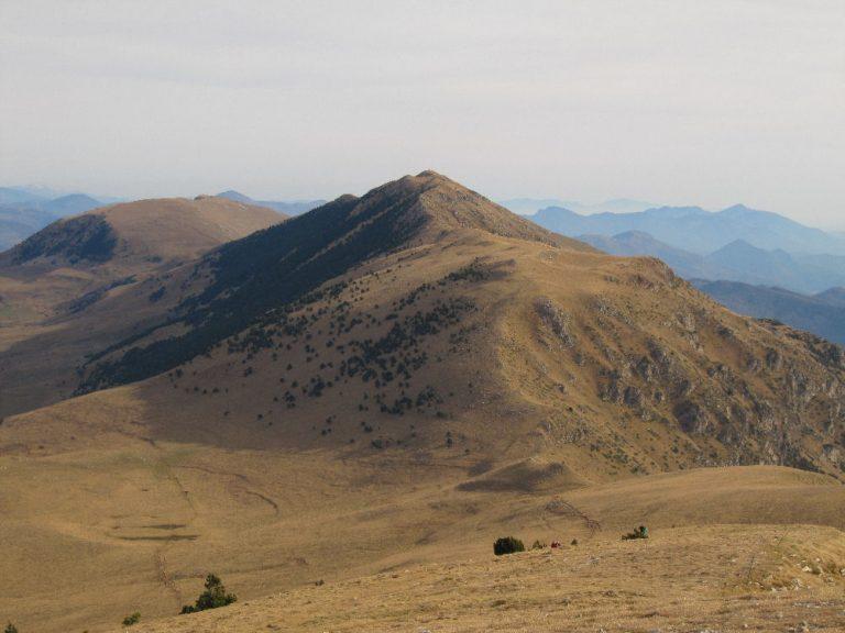 Camprodon, Pasteres, puig Estela (2010), Taga (2040), Ribes de Freser