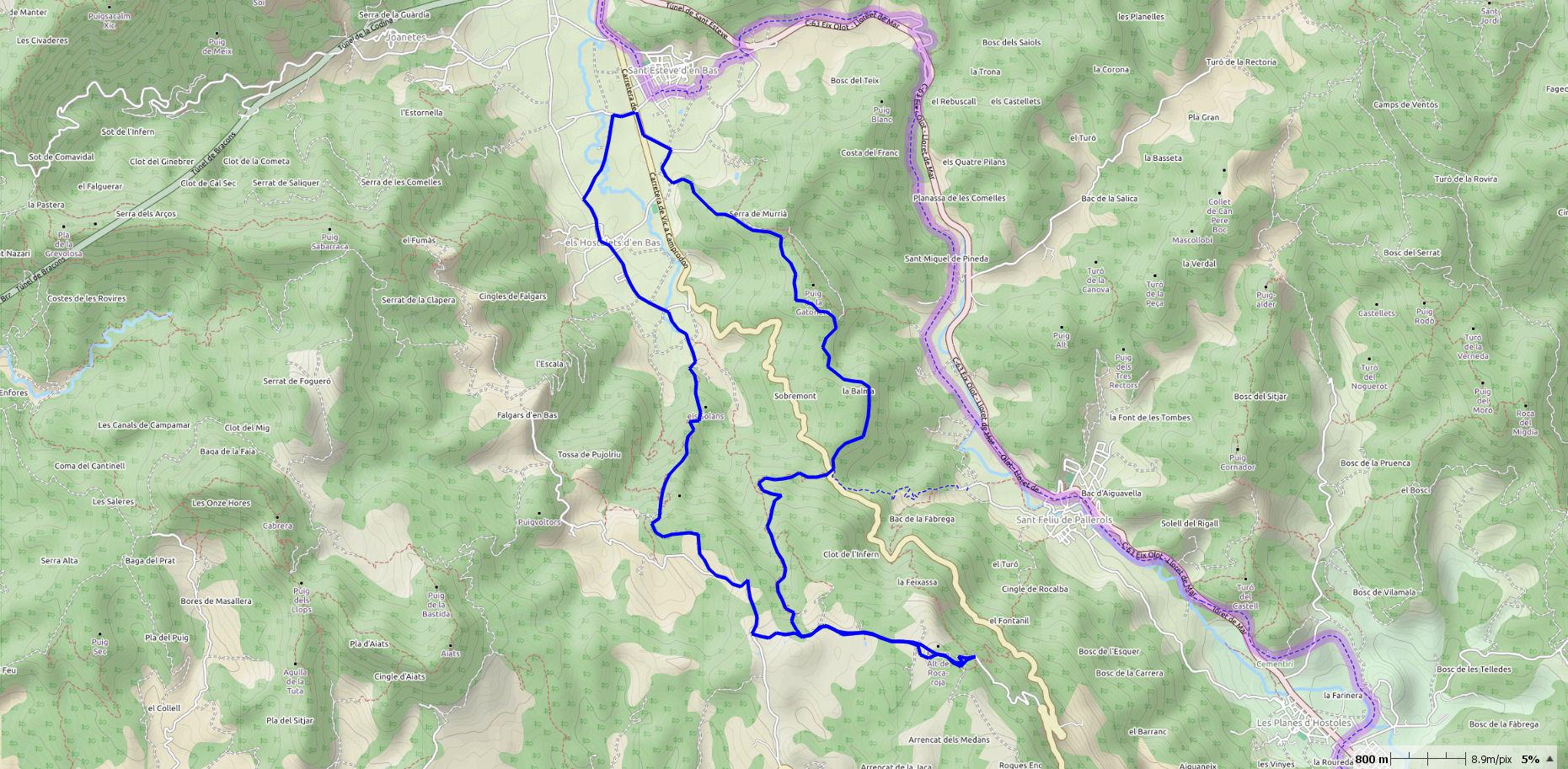 ESTEVE-BAS-SALUT-MAP