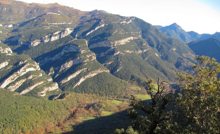 Ascenso directo al Bestraca (1058 m.) desde Oix. Circular al coll Sagordi