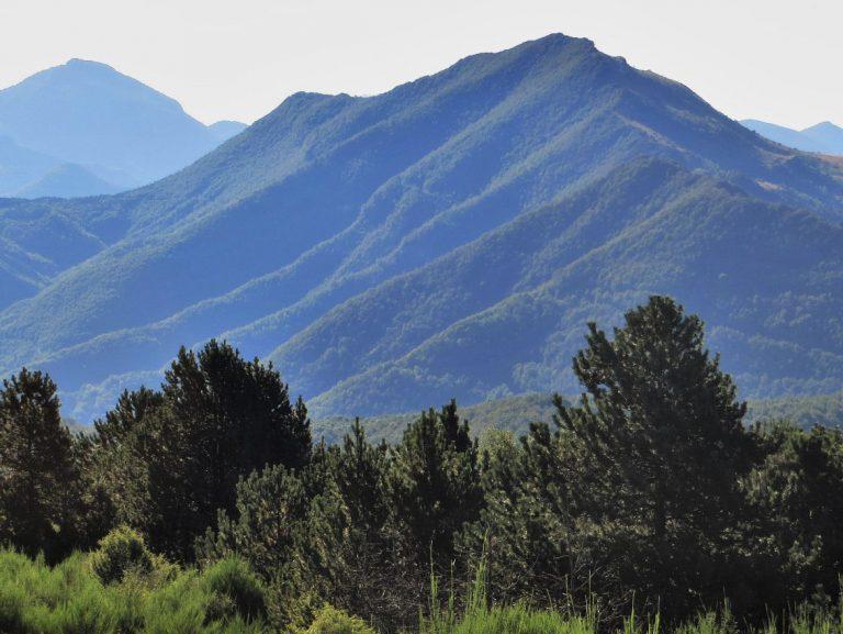 Rocabruna, Montfalgars (1609 m.)