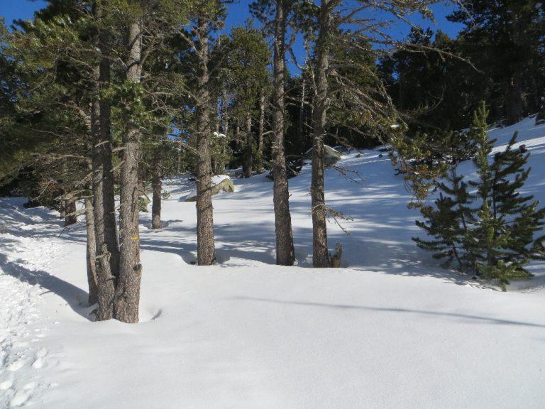 Prat Llong (Meranges) Puigpedrós (2914 m.)