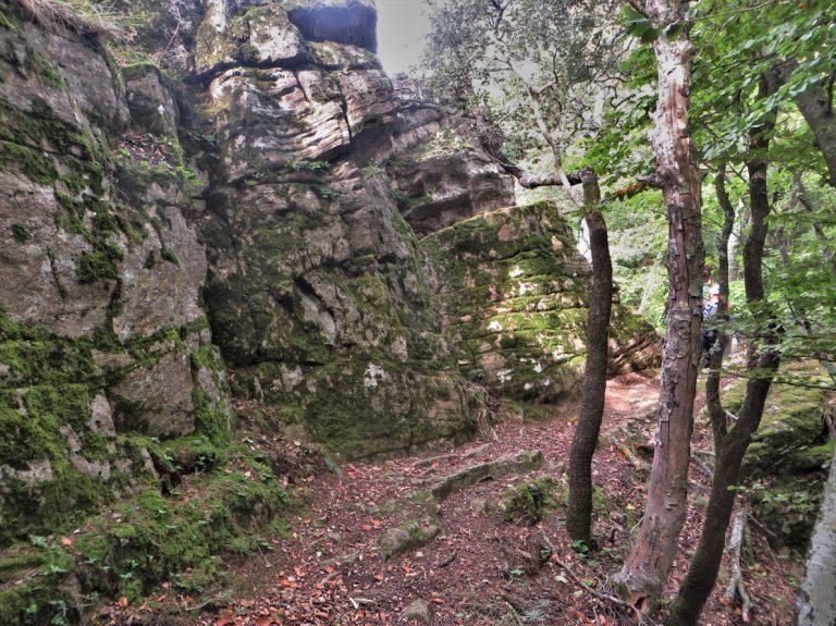 Sant Aniol, santa Maria y Castell de Finestres, puig Sallança (1025 m.), Faig Rodó, camí de les Medes
