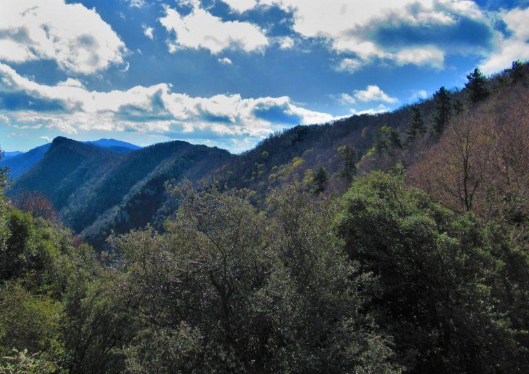 Serra del Corb – Les Preses, Xenacs, Pic Redon (909 m.), Marboleny