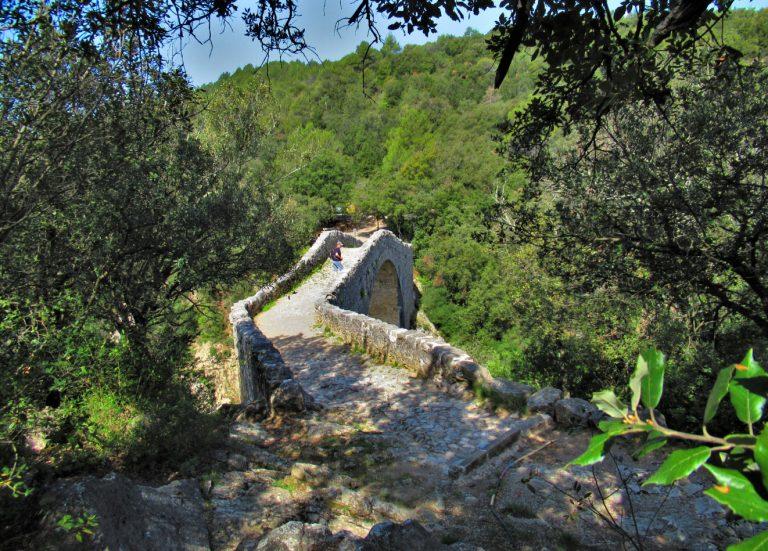 Sant Jaume de Llierca, Tortellà, Montagut