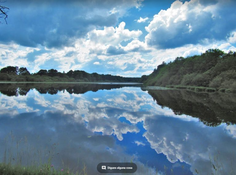 Valle del Loira, castillos y bosques II: Canal de Orleans, Grignon
