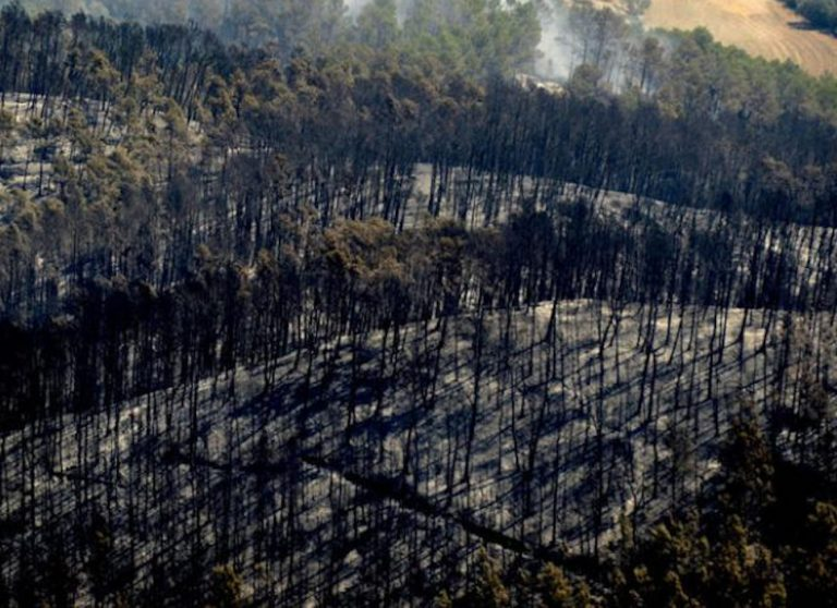 Las llamas, hacia la Garrotxa. e-Notícies. 23/07/2012