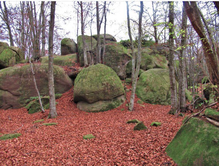 Sant Feliu de Pallerols, Coll d'Uria, la Salut, les Roques Encantades, Coll de Condreu, Font Rocauba