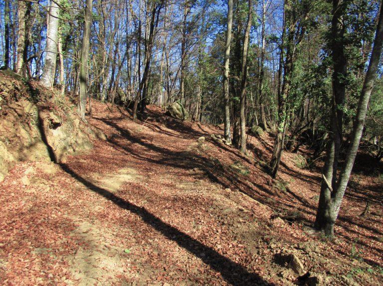 Vall de Bianya, Serra de Sant Miquel, Collada Baixa (de la Serrota), Sant Marti Solomal