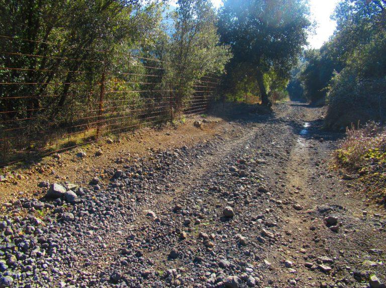 Sant Feliu de Pallerols, Serra del Conteller