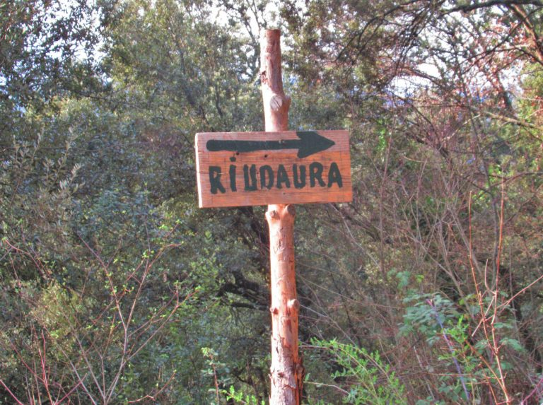 Por los bosques de Riudaura. Serra de Sant Miquel del Mont