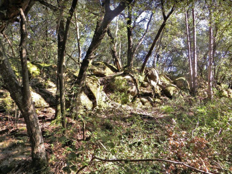 Serra de Malforat. Hostalnou de Bianya, sender Era d'en Seneca, Coll de la Barcadura, Sant Martí del Clot