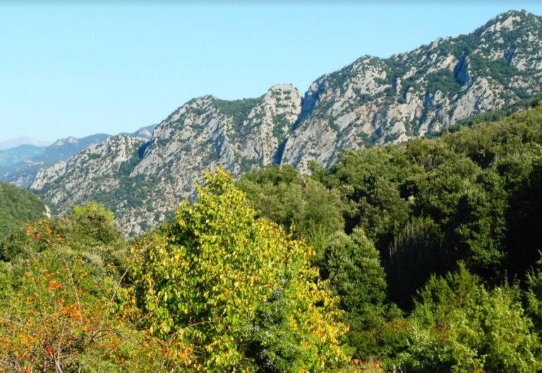 Sadernes, Santa Bàrbara de Pruneres, Coll de Poli, Bac Planseslloses