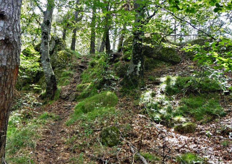 Ripoll, Torrent de Garona, Carena de Vilardell, Puig del Catllar, el Catllar