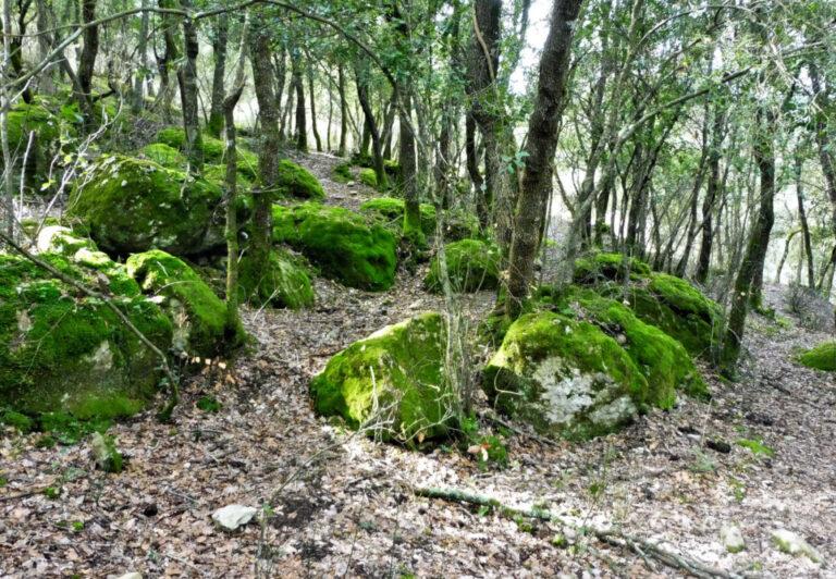 Santa Pau, Els Arcs, Camí de Samariu, Serra de Colitza, Serrat de Can Batlle, Gorga del Rat-buf