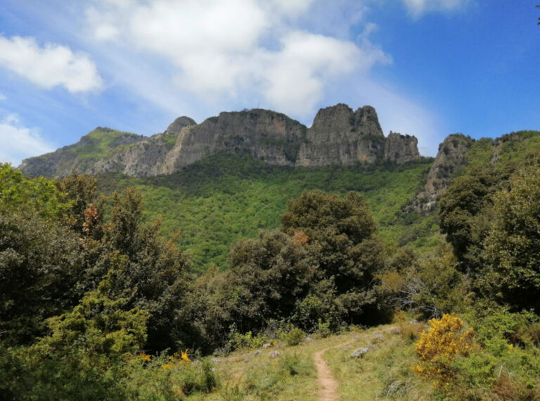 Senderos del Puigsacalm. Puigpardines, Sender del Serrat de Fontanils, Sender de la Panosa